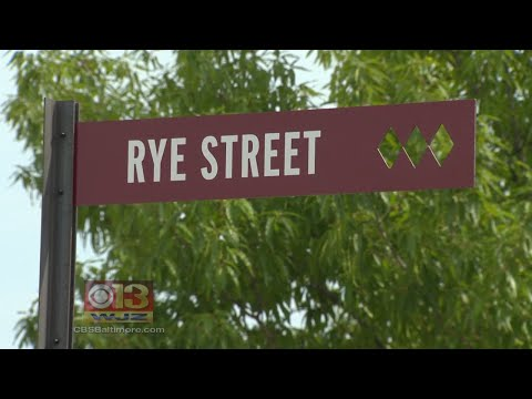 Port Covington's First Street Unveiled As Developments Are Underway