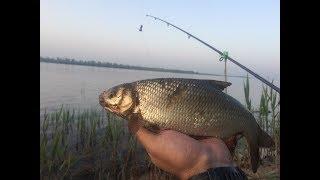 #2 Рыбалка Ловля Язя и Голавля на Фидер - Донку. Принцип Поймал Отпусти. Приметы на Рыбалке
