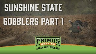 Video Sunshine State Gobblers Part I download MP3, 3GP, MP4, WEBM, AVI, FLV Januari 2018
