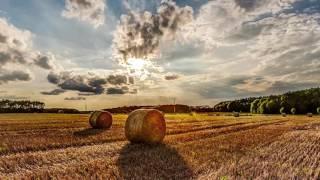 Скільки коштує українська земля