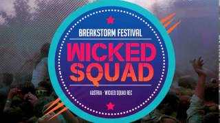 Wicked Squad @ Breakstorm Festival (Videoflyer)