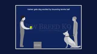Dog Training  Detection Manual Prefinal  , Our New Police Book Out Shortly