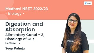 Digestion and Absorption   Alimentary Canal - 2, Histology of Gut   L2   NEET 2022/23   Seep Pahuja