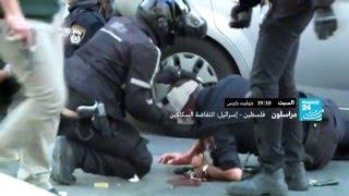 قريبا.. فلسطين – إسرائيل: انتفاضة السكاكين