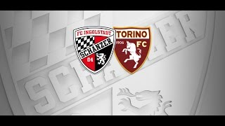 Video Gol Pertandingan Ingolstadt vs Torino FC