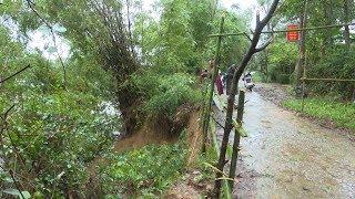 Quảng Trị: Bờ sông bị sạt lở nghiêm trọng do mưa lũ