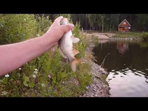 рыбалка сатка