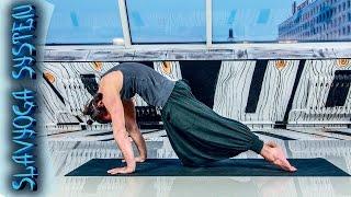 випарита дханурасана в чатуранга дандасане  Асаны хатха йоги  Йога для начинающих  SLAVYOGA