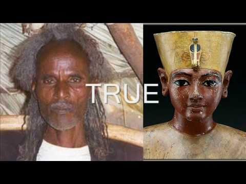 Summary -> King Tuts Dna Is Western European Eutimesnet