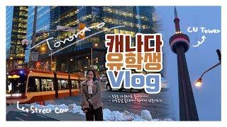 캐나다 유학생 Vlog|토론토 다운타운 구경하기 온타리…