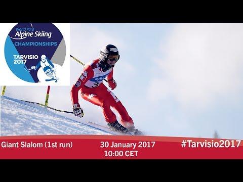 Giant slalom 1st run |  2017 World Para Alpine Skiing Championships, Tarvisio