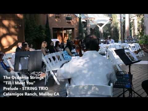 Pagdating ng panahon instrumental wedding