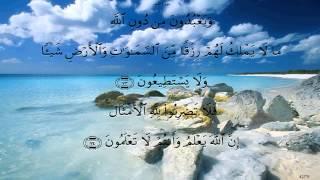 سورة النحل بصوت ماهر المعيقلي