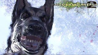 Call of Duty Modern Warfare 2 Sniper Mission Gameplay Veteran