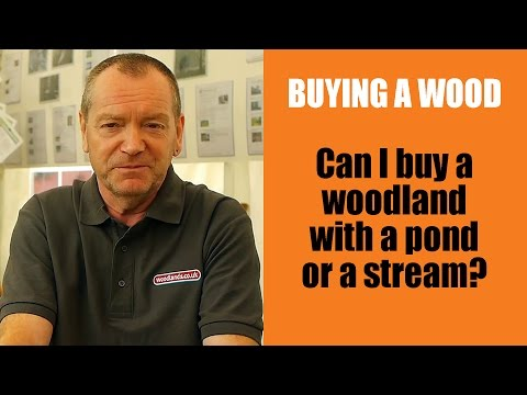 Buying a Wood: Can I buy a woodland with a pond or a stream?