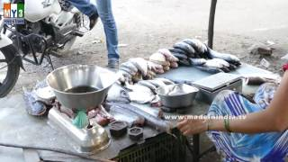 FISH SELLER IN INDIAN STREETS | STREET FOODS IN INDIA