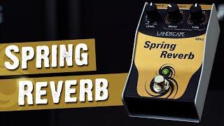 Pedal Spring Reverb | LANDSCAPE