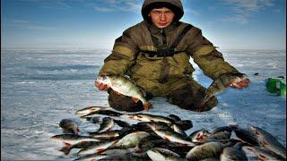 незабываемая рыбалка весна 2020 горбачи на мормышку один за одним