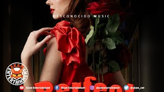 Unkown Gringo - Perfect [Audio Visualizer]