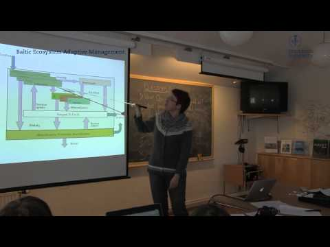 Biogeochemical modeling in the Baltic Sea, BALTSEM model