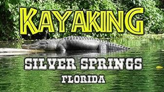 Kayak w/Gators & Monkeys   Silver Springs, FL