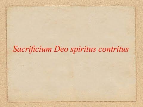 S. Augustini episcopi Sermo 19