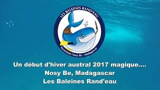 Les Baleines Rand'eau, un début d'hiver austral 2017 magique !
