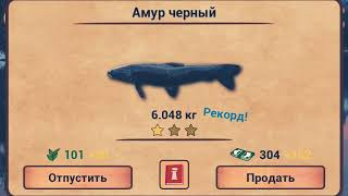 My fishing HD #1 ЛУЧШАЯ РЫБАЛКА ДЛЯ АНДРОЙД