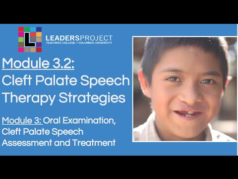 Module 3.2- Cleft Palate Speech and Feeding: Cleft Palate Speech Therapy Strategies