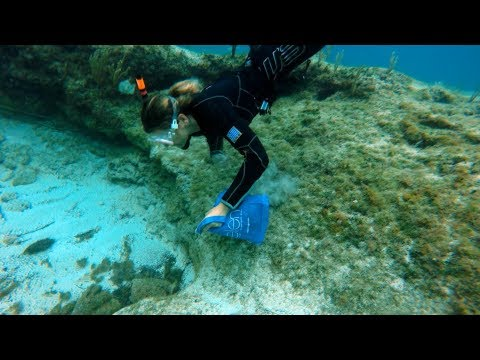 Katerina Underwater Clean Up