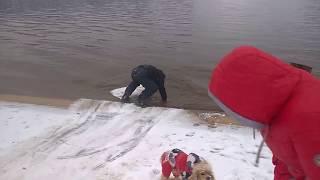 Русские забавы, догнать и перегнать собаку