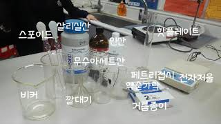 여덟. 아스피린 합성 실험