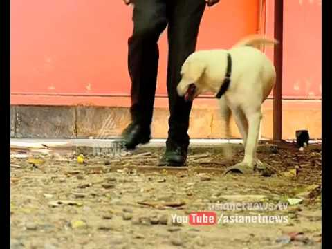Police Dog 'Buddy' in CI rank of Kerala Police