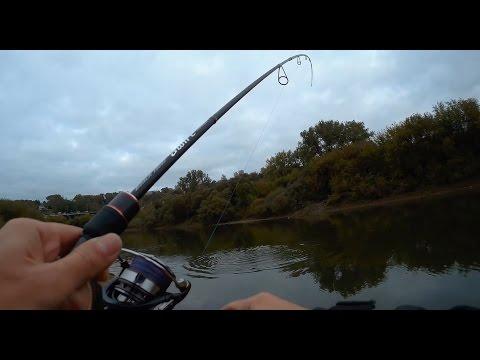 рыбалка днепр смоленск 2016