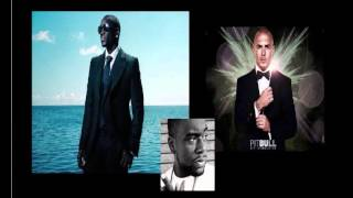 Download Pitbull - Everybody Fucks feat. Akon & David Rush MP3 song and Music Video