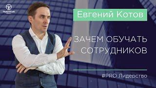 Зачем обучать персонал (советы для руководителей). Евгений Котов