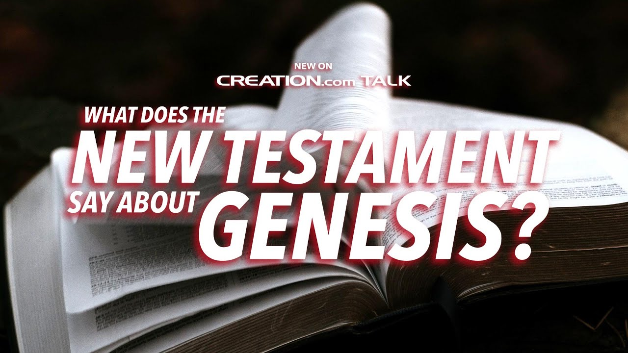 What Does the New Testament Say About Genesis?