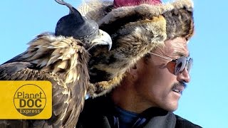 Golden Eagle Hunting. Mongolia | Planet Doc Express