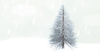 How to create a winter snow scene in Adobe Photoshop CC