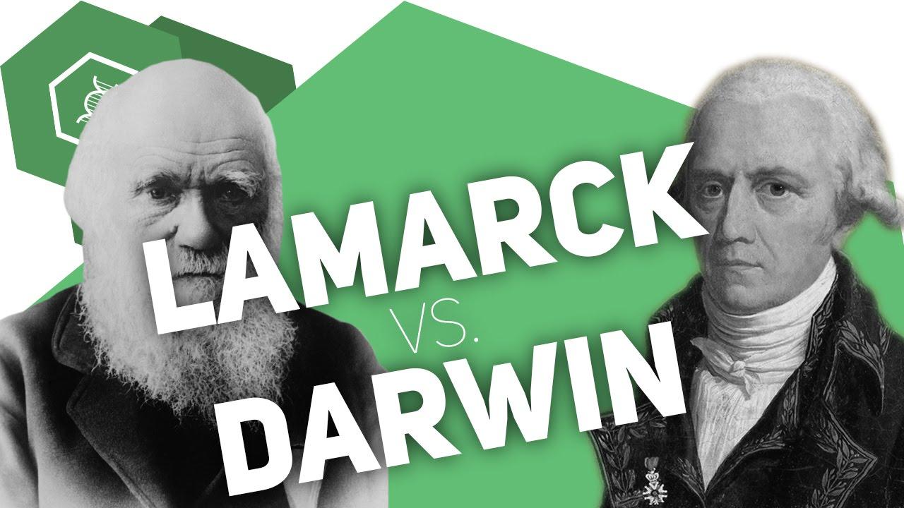 Darwin vs. Lamarck – Der Vergleich der Evolutionstheorien - YouTube