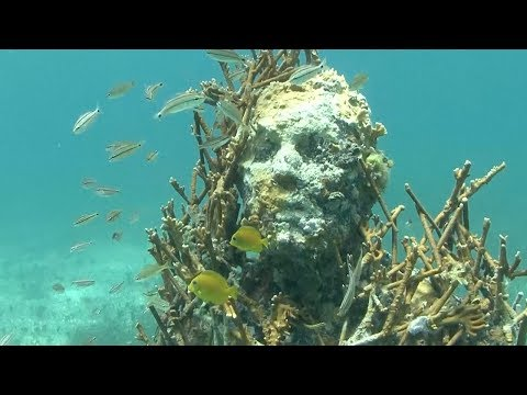 Mexico's underwater museum showcases sculptures on seabed