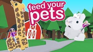 DÉCOUVERTE DE NOUVEAUX ANIMAUX DE COMPAGNIE! / Roblox: Nourrir vos animaux de compagnie 🦁🐷