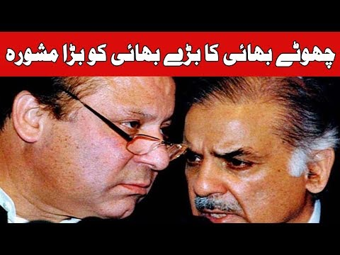 Some Advisers & Ministers Gave Wrong Advice To Nawaz Sharif, Says CM Shehbaz Sharif | 24 News HD