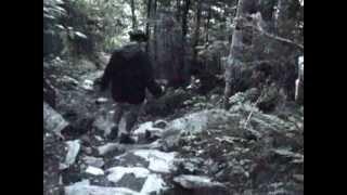 """USHUAIA Nature & Decouverte """"En mode GoPro""""[CANADA]"""