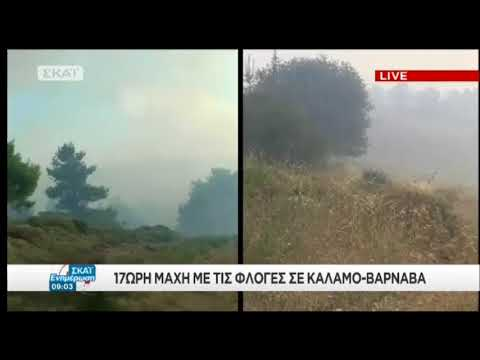 newsbomb.gr: Φωτιά Βαρνάβας: Αγνοείται άνδρας