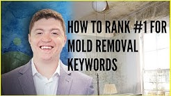 How To Rank #1 For Mold Removal Keywords On Google [Local SEO Guide]
