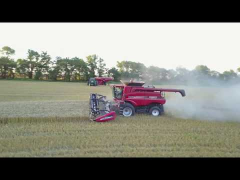 Calf Creek Farm's Wheat harvest 2017