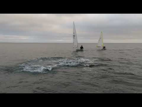 Dolphins join in Tenby junior sailing night