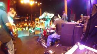 some of fake in you trees with hed pe drummer side