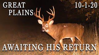 Great Plains | Awaiting A Bucks Return